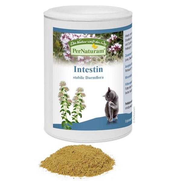 Intestin von PerNaturam für stabile Darmflora bei Parasiten bei Katzen