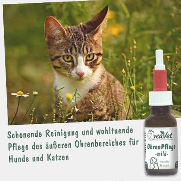 Natürliche Ohrenpflege von cdVet für deine Katze